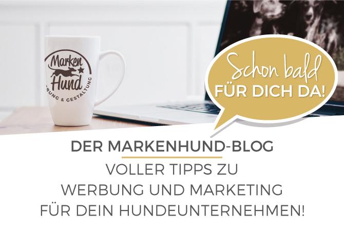 markenhund-blog-ss