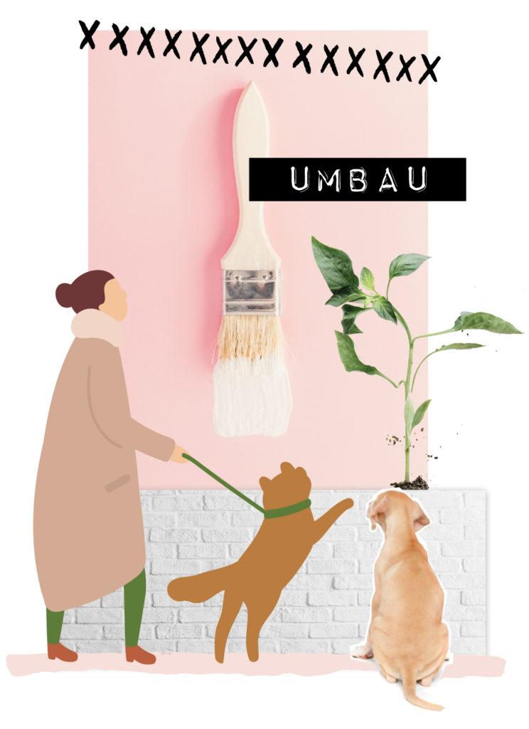 markenhund-marketing-hundeunternehmer-umbau